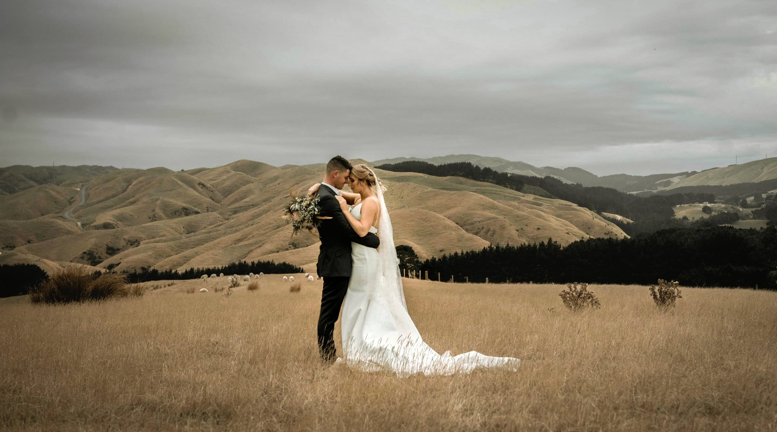 1 Wedding Videography Wellington New Zealand V Visual